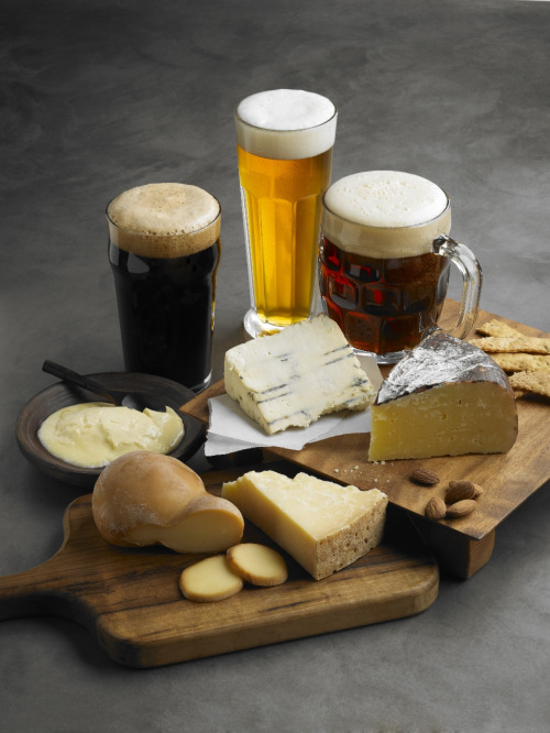 beer_cheese_sampler1 scion